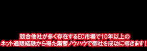 競合他社が多く存在するEC市場で10年以上の ネット通販経験から得た集客ノウハウで御社を成功に導きます!